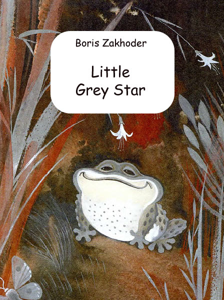 Little Grey Star Zakhoder B.